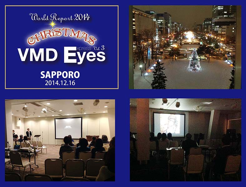 2014_vmd eyes_002.jpg